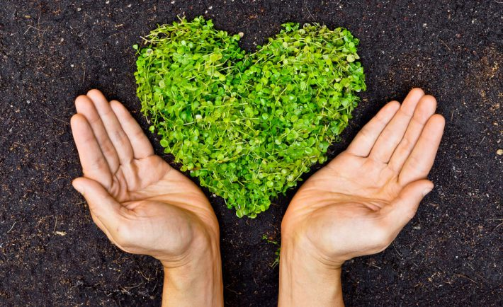greenmark eko agencja